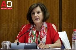 La nueva renta mínima de inserción social de Andalucía beneficiará a unas 42.500 unidades familiares al año