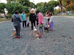 Los cursos de adiestramiento canino volverán en septiembre