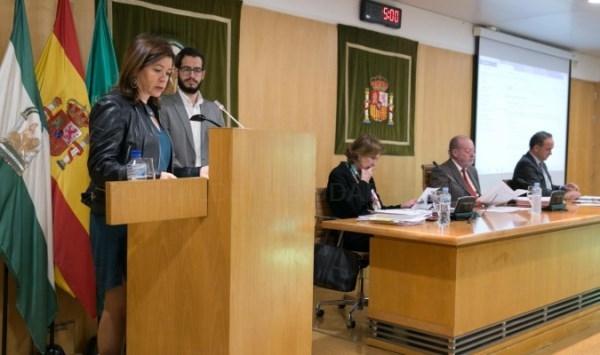 La Diputación pide una tarjeta única de transporte para Sevilla y el área metropolitana