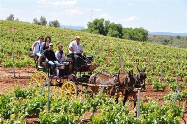 """Una campaña de promoción invita a los """"amantes"""" de Extremadura a compartir sus experiencias turísticas"""