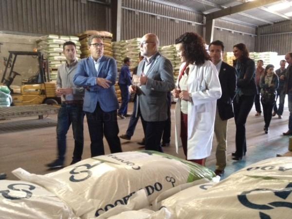 Echávarri destaca las medidas del GobEx para facilitar la integración cooperativa en su visita a instalaciones de Imedexsa, Cooprado y la DO Torta del