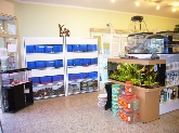 peces tropicales, peces agua fría, alimento, accesorios acuarios, peceras