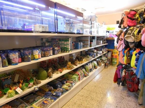 k i moix, tienda de alimentación canina en Inca