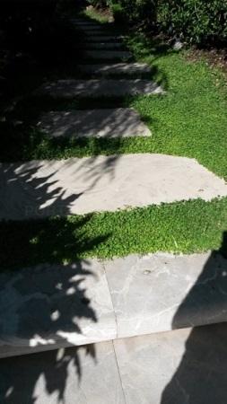 Verd Soller cesped natural