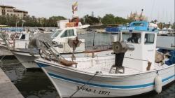 Baleares, Cataluña y Valencia hacen frente común para una gestión innovadora de la pesca de arrastre que garantice los recursos al Mediterráneo
