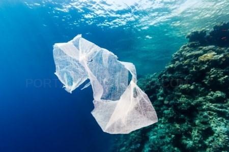 Desciende un 17% el número de residuos recogidos en el litoral de las Islas Baleares el mes de junio