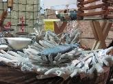 Ropa de agua en Donostia, ropa de agua en  san sebastian