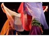 Clases de Danza Oriental en Donostia, Biodanza en Donostia