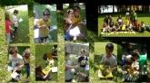 Inglés para niños en Donostia, Colonias verano inglés en Donostia