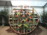 mantenimiento de jardines sant feliu baix llobregat, flores a domicilio sant feliu baix llobregat,