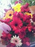 flors per encarreg sant feliu baix llobregat, flores y plantas sant feliu baix llobregat,