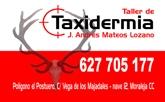 Taller de Taxidermia Jose Andrés Mateos Lozano