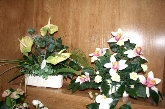 Decoración para eventos, ramos de novias, elaboración de centros de mesa,  Ornamentación y decoración de oficinas y despachos en Sierra de Gata