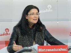 """El PSOE pide un """"marco estable"""" de financiación de la discapacidad"""