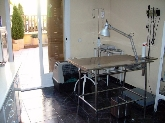 clinica veterinaria en san sebastian de los reyes,   veterinarios en san sebastian de los reyes