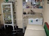 vacunas de animales en san sebastian de los reyes,  veterinaria  a domicilio alcobendas