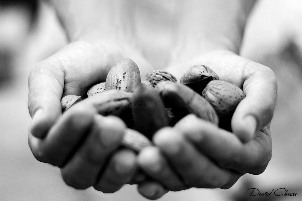Sannas, Salud y Desarrollo Personal