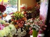floristas a domicilio en alcobendas,  floristas a domicilio en zona norte