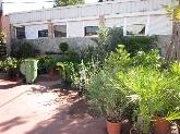plantas, macetas, jardin, venta, tienda, flor, interior, exterior, aromatica