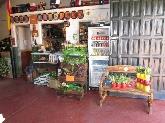 jardinero, abonos, semillas, vivero en los barrios, lechuga, tomate, pimiento,
