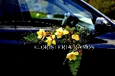venta de Rosas, orquídeas, ramos, san roque, floristeria, flor, flores, comprar flores,