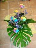 flores, margaritas, novias, regalos, nacimientos, algeciras, floristeria, tienda de flores, jardin,