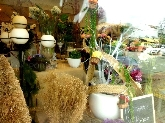 articulos para plantas, macetas, mangueras, jardineria, jardineria profesional