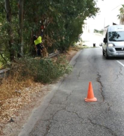 ALGECIRAS: EL AYUNTAMIENTO LLEVA A CABO TAREAS DE DESBROCE EN AVENIDA LAS FLORES