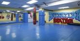 clases de valetudo en sanse, clases de jiu jitsu brasileño en sanse