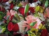 mayorista de flor cortada en madrid,  flor cortada en san sebastian de los reyes