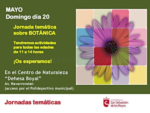 Jornada Botánica Monográfica En El Centro De Naturaleza Dehesa Boyal
