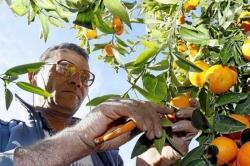 El sector agrario sufre un sobrecoste de 6 millones por riegos adicionales