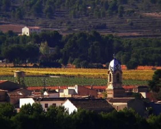 Terres dels Alforins referencia y motor económico en la Vall d´Albaida