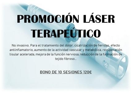 láser terapeútico en animales, cirugía animal en Cuenca
