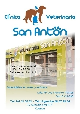 Veterinario 24 horas
