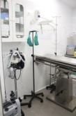 Análisis, Análisis de triquinella, clínicas veterinarias,