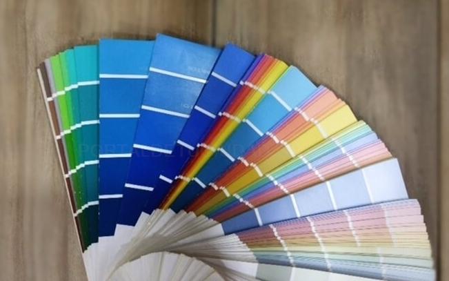 aplicación de pintura, pinturas baratas en Plasencia