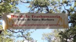 La Junta de Extremadura colabora en la celebración de la XII edición del Día de la Trashumancia
