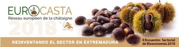 El IX Congreso Europeo de cultivo de castaños se celebrará en septiembre.
