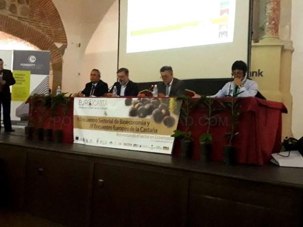 Más de 200 productores e investigadores se dan cita en 'Eurocasta 2018' para abordar nuevas técnicas sostenibles de cultivo del castaño.