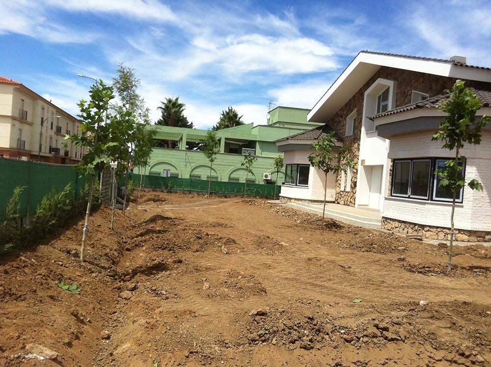 plantación y mantenimiento de césped mérida