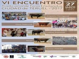 VI encuentro de toros ensogados de Teruel