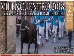 VII Encuentro Tradicional de Toros Ensogados Ciudad de Teruel