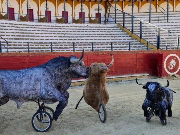 Actividades infantiles en la Plaza de Toros de Teruel
