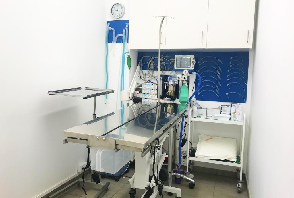 Veterinarios en Teruel
