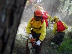Cerca de 1.250 personas para prevenir y extinguir incendios en Aragón