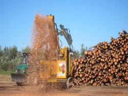 La comarca del Bajo Aragón apuesta por la Biomasa