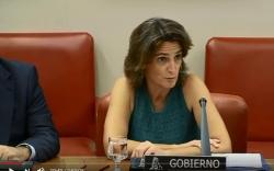 """Ribera: """"El carbón es el 17% de la energía pero el 58% de la contaminación"""""""
