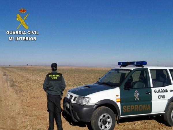 La Guardia Civil investiga supuestos delitos de falsedad y estafa en relación con el acondicionamiento de semillas de cereal