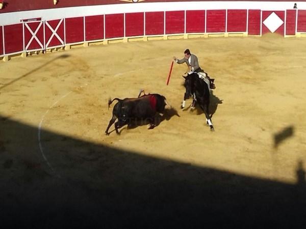 EL REJONEADOR PEREZ LANGA PUERTA GRANDE EN SANTA EULALIA DEL CAMPO AL CORTAR TRES OREJAS